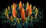 big coloured flower