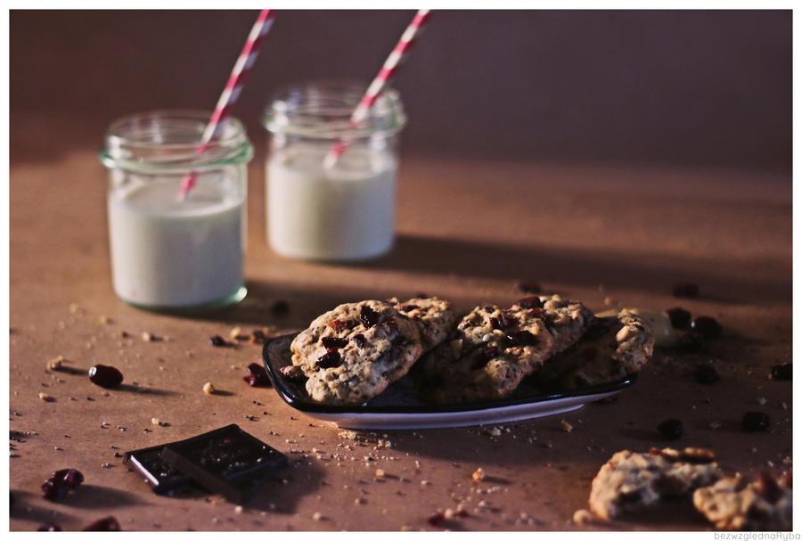 Oatmeal cookies by BezwzglednaRyba