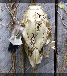 Deer Skull Carving by Alligator-Jesie