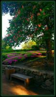 Mystic garden by gintautegitte69