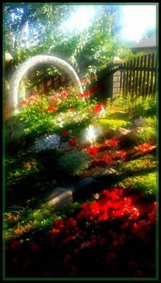 Lithuania home garden