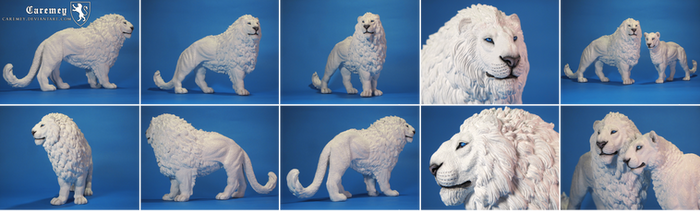 White Lion by Caremey