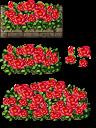 rose bushes tiles by kenichiiginsei