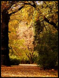 The Polish golden autumn