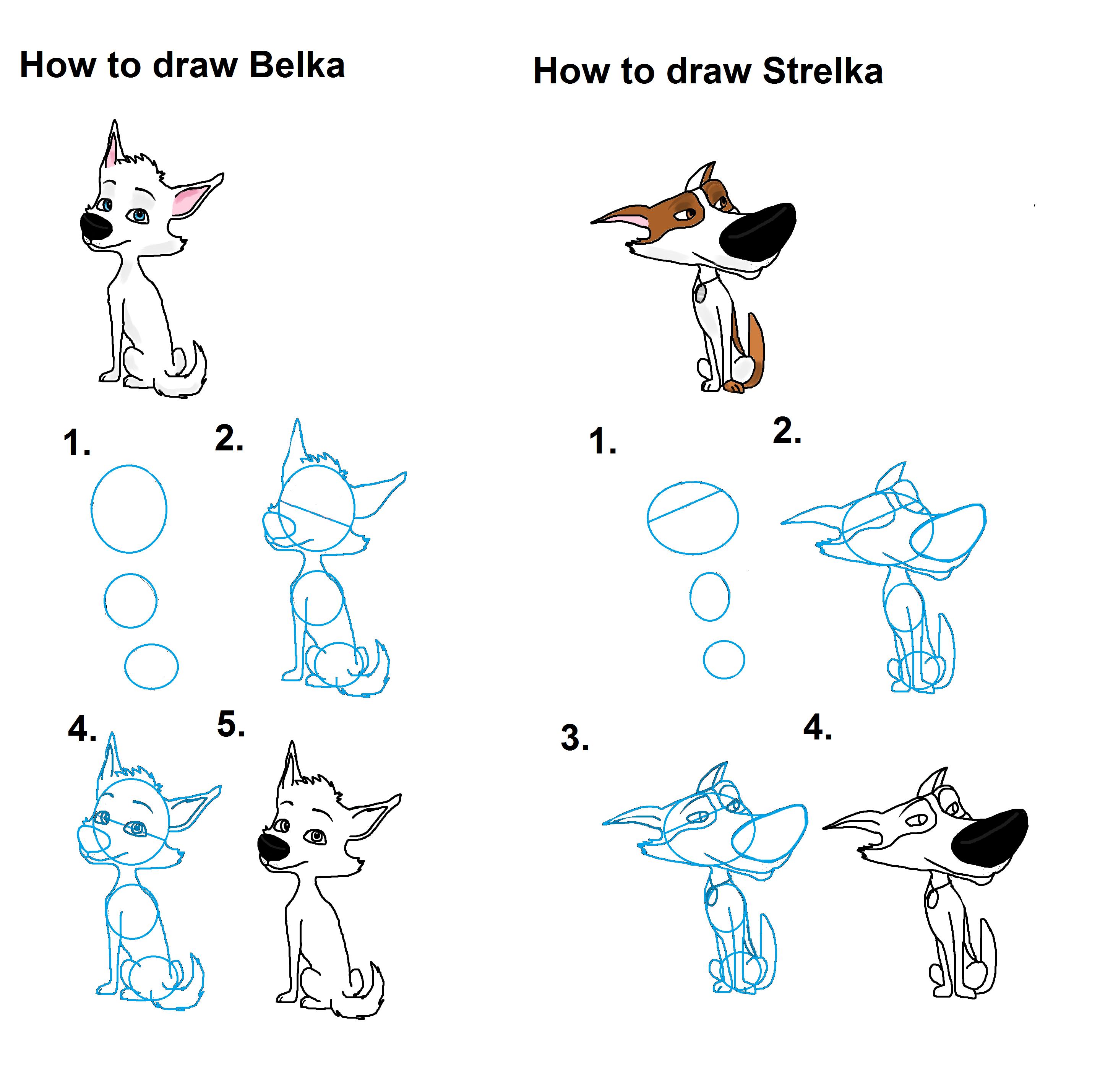 Фото как нарисовать белку и стрелку