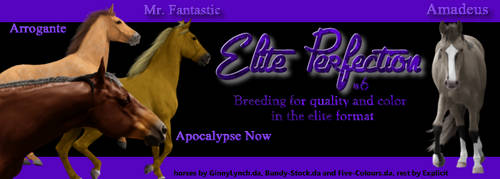 Elite Perfection's siggy by Explicit18