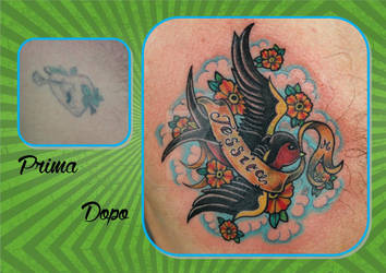 Swallow Cover Up