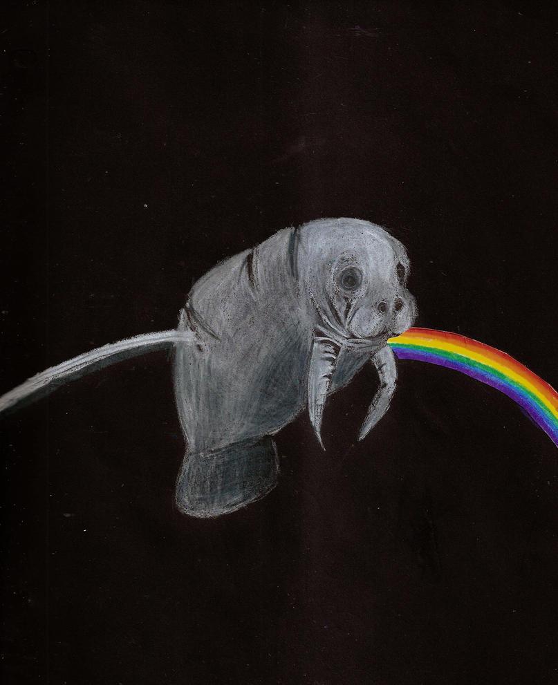 The Dark Side of the Manatee by nebulaemporium