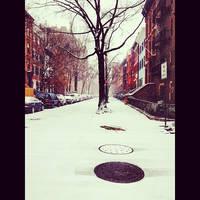 Snowy days in Brooklyn