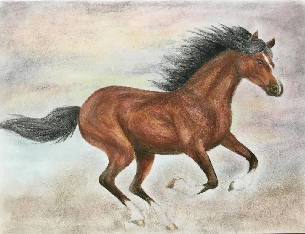 Galloping Horse by levanacats