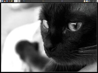 Linux Desktop by Oki666