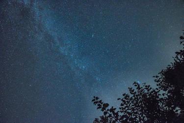 Milky Way over my Garden
