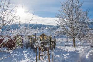 Beauty and Destructivity of Snow Wonderland