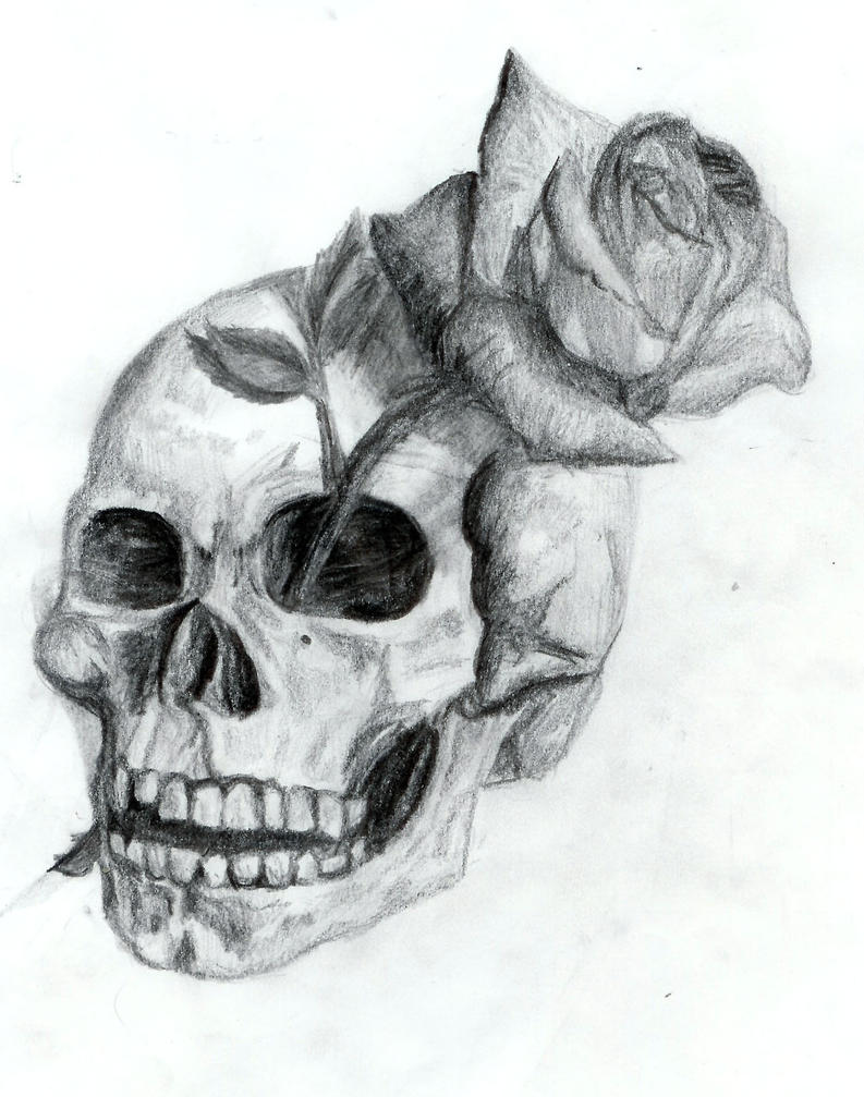 This is a picture of Challenger Drawing Of Skulls And Roses