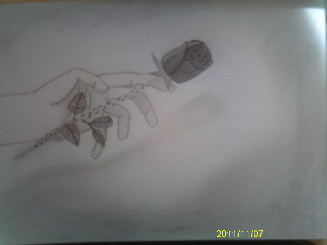Hand Holding Rose Drawing Hand Holding Rose 2 by