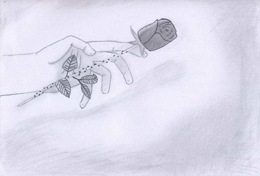 Re uploaded hand holding rose by mirandalynn92 on deviantart for Hand holding a rose drawing