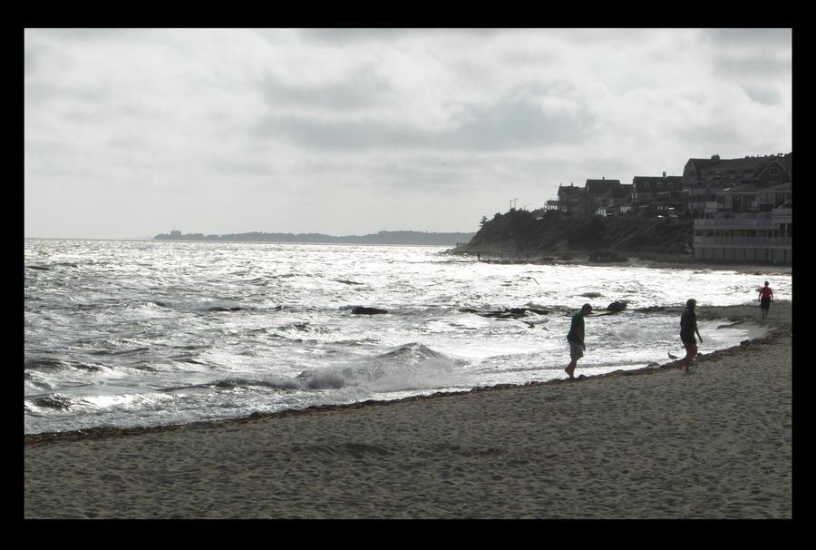 Beach Wanderers by ShadowIsStillAlive