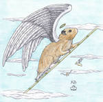 Angel Hamster again...