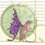 Faery Hamster