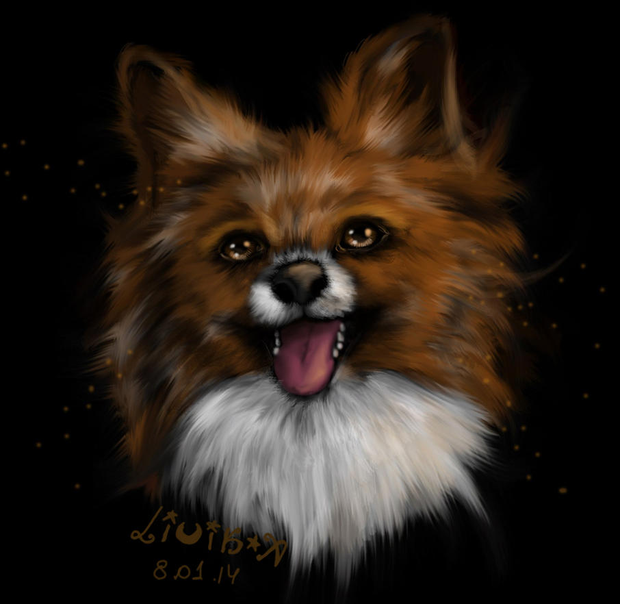dog by LiCiK-A