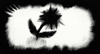 Gloomy Flower by SloPeple