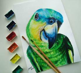 Parrot (photo version)