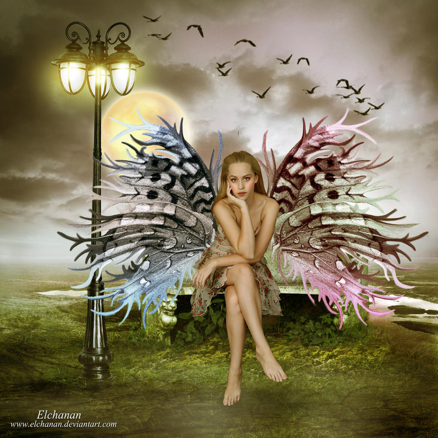 Fairy by Elchanan