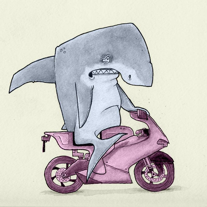 Shark On A Bike By Chunkysmurf On Deviantart