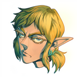 Link from The Legend of Zelda : Breath of the Wild
