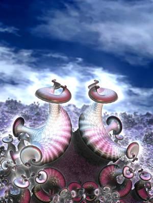 Fungi in love