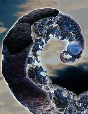 The Pearl of Heaven by Metafractals