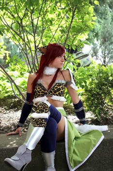 Can't Fly All the Time - Fairy Tail - Erza