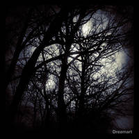 Weeping Trees by Dreamart