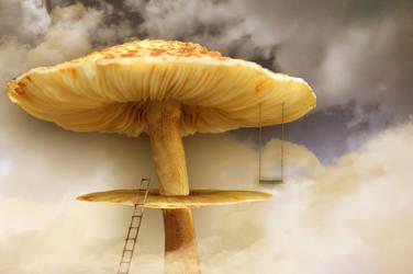 A Mushroom High