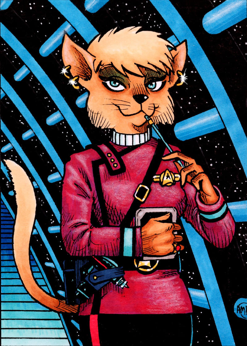 Trek Kitty 2 by Frohickey