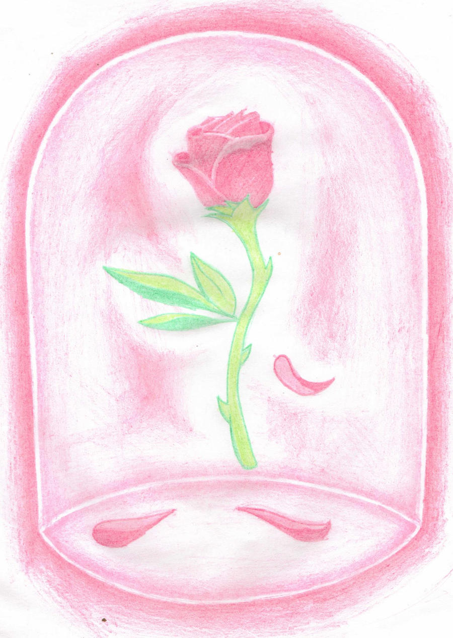 Beauty And The Beast Rose Wallpaper Beauty And The Beast Rose