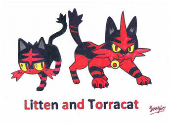 The Pokemon drawing on litten and torracat