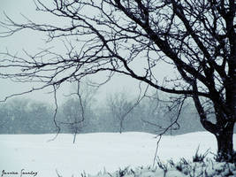 Snowfall by cheekz-jess