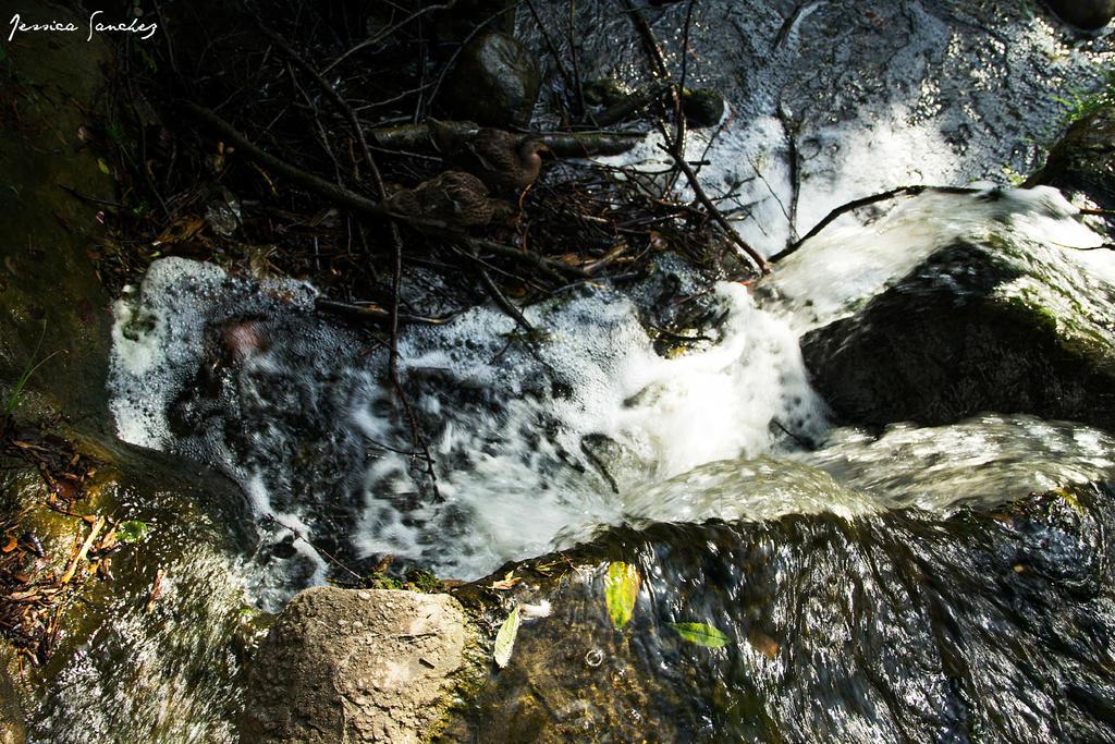 Waterfall by cheekz-jess