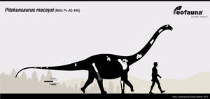 Pitekunsaurus macayai by EoFauna