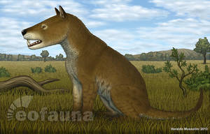 Hyaenodon  horridus by EoFauna