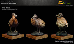 The Dodo (Raphus cucullatus) sculpture 1:8 by EoFauna