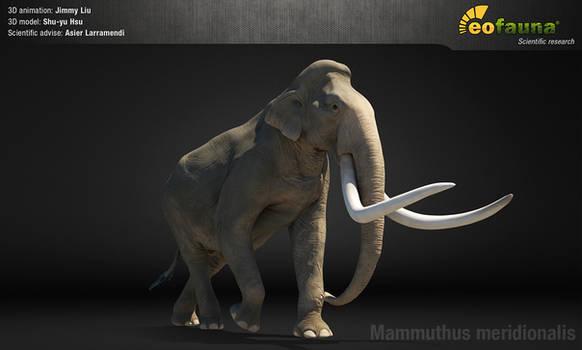 Southern mammoth 3D animation screenshot
