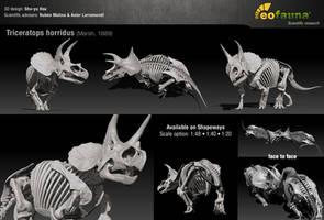 Triceratops horridus 3D skeleton sculpture