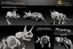Triceratops horridus 3D skeleton sculpture by EoFauna