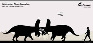 Ceratopsian Olmos Formation