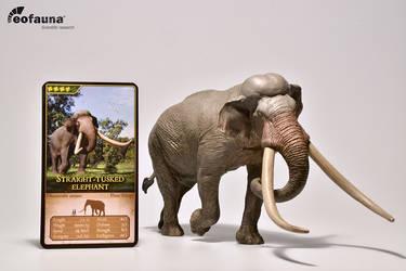 Eofauna Straight-tusked elephant figure