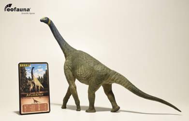 Eofauna Atlasaurus figure