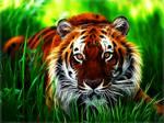 Fractal Tiger Wallpaper
