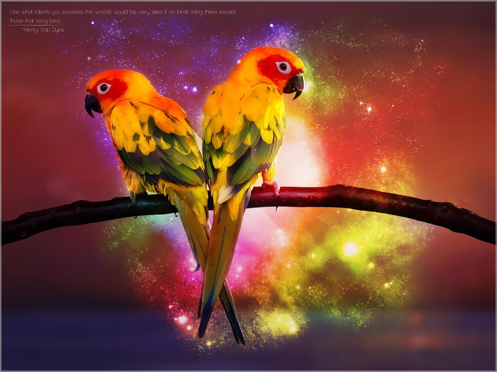 paradise_birds_by_pimart-d3j6rnn.jpg